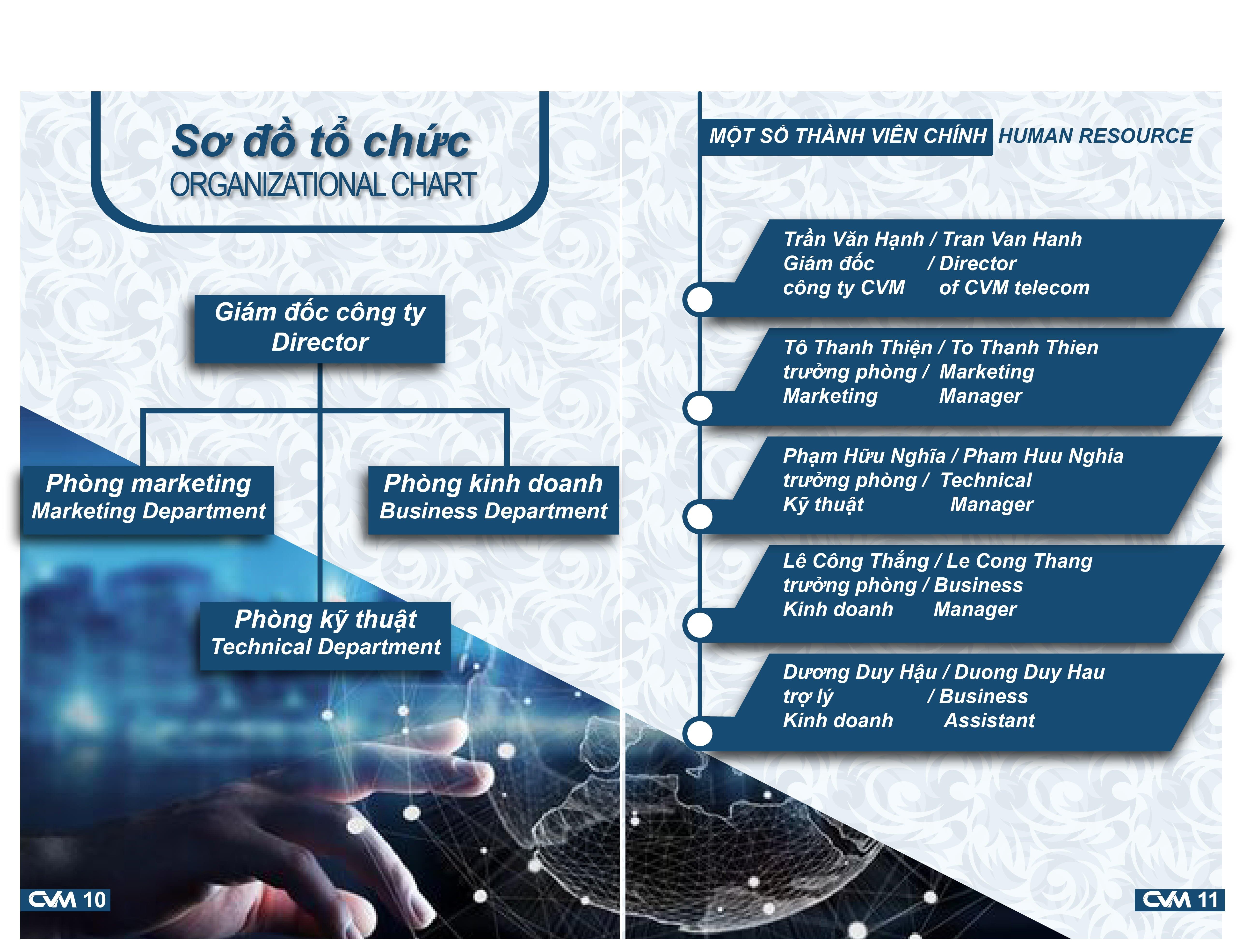 Sơ đồ tổ chức của công ty CVM Telecom